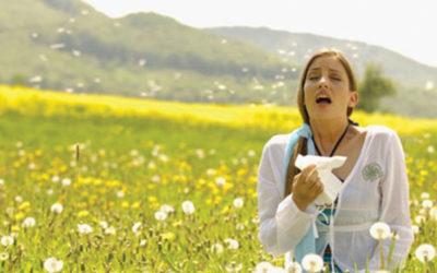Seasonal Allergies Spring Up Early